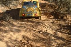 Day 10 CSR Daffy Duch in sand